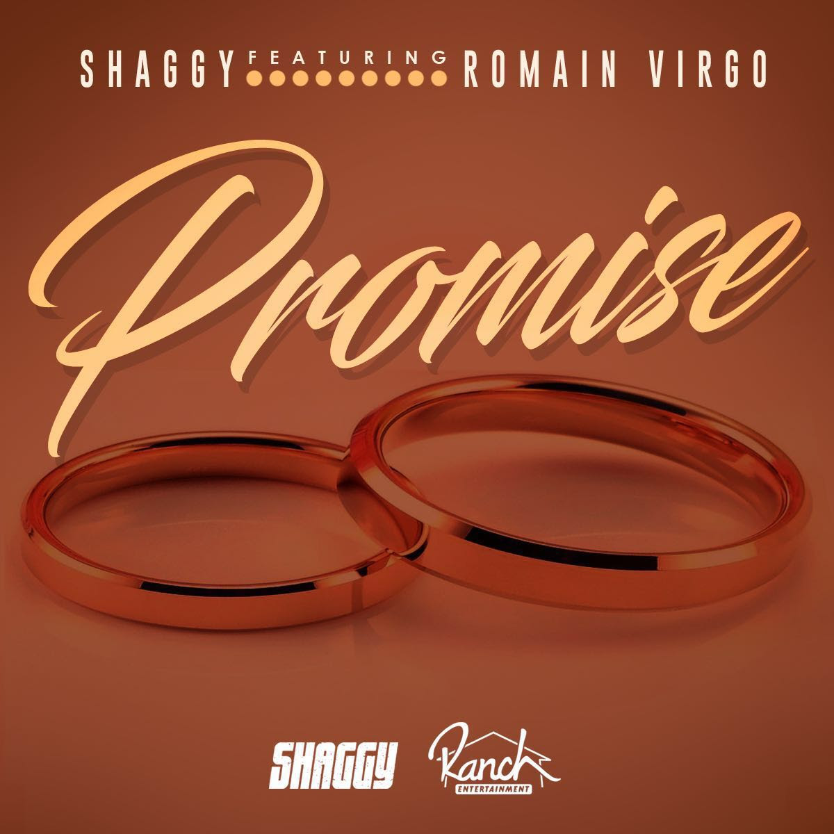 Shaggy- -Promises